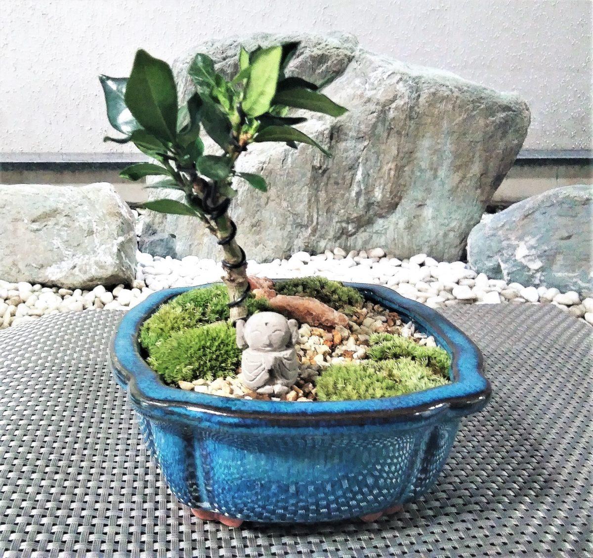 初めての苔盆栽づくり体験(お地蔵さんのいる風景)