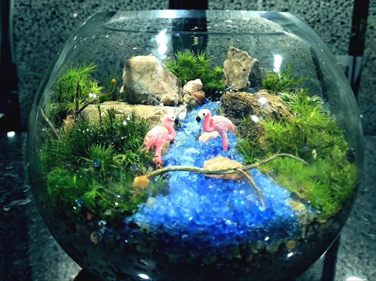 広がる自然風景の世界☆苔テラリウム(かわいいグラスボール)創作体験